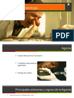 Agonía y tanatología.pptx