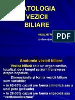 Patologia v.biliare Proca