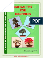 BONSAI-TIPS.pdf