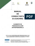 229346810-Manual-Consultanta-Coaching.pdf