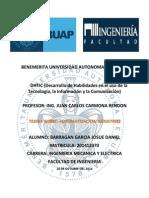 ENSAYO FINAL DE DHTIC.docx