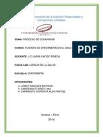 PROCESO  de comunidad terminado.docx