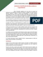 informe  materias primmas 4.docx