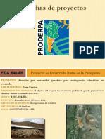 005000-Proyectos NEUQUEN.pdf