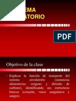 5°_sistema circulatorio.ppt