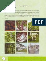 potensi2.pdf