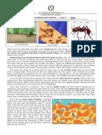 Ants_Exercise.pdf