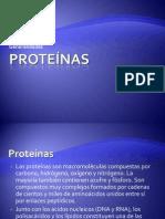 5-1_ProteinasGeneral.pdf