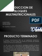 Bloques Multinutricionales.ppsx
