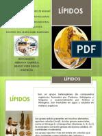 LÍPIDOS_BROMATOLOGÍA.ppt