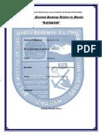 INFORME DE LA CARTA NACIONAL.docx