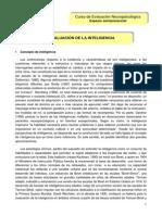 Inteligencia evaluacion.pdf