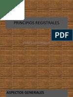 5. PRINCIPIOS REGISTRALES (1).pdf
