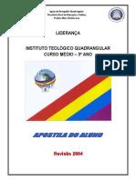 F 2010 0308 Liderança.pdf