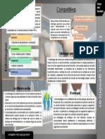 Estrategias genéricas - Neri Zavaleta,Fanny.pdf