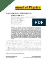 belik2007.pdf