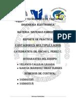 Tutorial de los contadores multiplexados.pdf