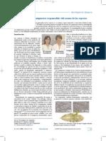 Dialnet-AnalisisDeLosCompuestosResponsablesDelAromaDeLasEs-2082872.desbloqueado.pdf
