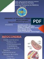 enfermedades_mitocondriales.ppt