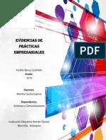 Evidencias, Practicas empresariales.docx