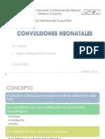 Crisis convulsivas neonatales.pptx