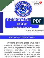 RCP Y CODIGO AZUL PSF 2013.pdf