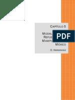 Cap%C3%ADtulo%205.pdf