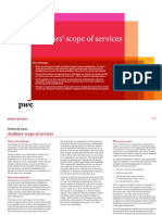 pwc-pointofview-auditorsscope