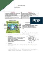 Edexcel GCE Biology AS Unit 2 Notes