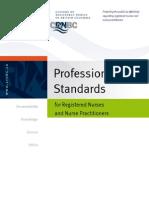 140ProfessionalStandardsd.pdf