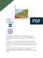 Biocarburante.doc