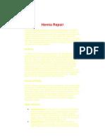 hernia repair.doc