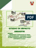 E.I.A. carretera.docx.pdf