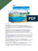 Ciclo del carbono.doc