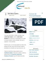 Historia, origen y evolución del lobo y del perro _ Galimundi.pdf