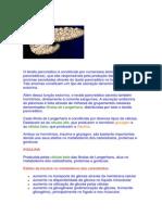 O tecido pancreático é constituído por numerosos ácinos.docx
