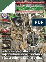 EL PRODUCTOR REVISTA - AÑO 10 - 125 - OCTUBRE 2010 - PARAGUAY - PORTALGUARANI