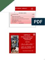 Cap__Sistema_de_Gestion.pdf