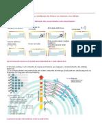 Tabela Quimica Inorganica.pdf