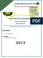 CAIRAMPOMA  INPRIMIR 2.doc