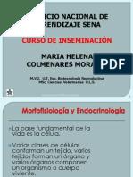 INSEMINACIÓN ARTIF. 2.ppt