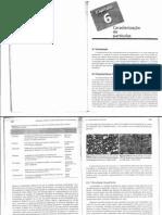 Capítulo 6 - Caracterização de partículas.pdf
