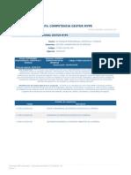 PERFIL_COMPETENCIA_GESTOR_MYPE.pdf