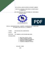 MONOGRAFIA FINAL ARRACACHA2.pdf