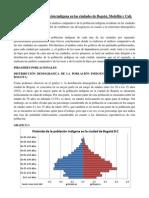 ANALISIS AFROS E INDIGENAS EN LAS CIUDADES DE CALI, MEDELLIN Y BOGOTA-1.docx