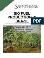 Bio Fuel Production in Brazil