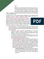 Balance de situación previsional.docx
