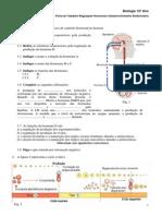 ficha-formativa-reproduc3a7c3a3o-e-manipulac3a7c3a3o-fertilidade.pdf