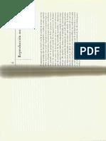 Reproducción Social.pdf
