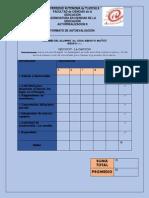 LIDIA-AUTOEVALUACION-2-PARCIAL-PRIMERA-docx.docx